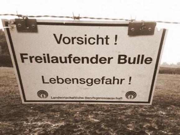 EW-Analyse-DOW-Jones-Vorsicht-Freilaufender-Bulle-Kommentar-André-Tiedje-GodmodeTrader.de-3