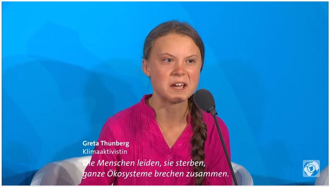 Klimahysterie-Was-ist-nur-los-in-diesem-Land-Kommentar-Andreas-Hoose-GodmodeTrader.de-2